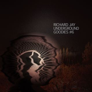 Richard Jay - Underground Goodies #6