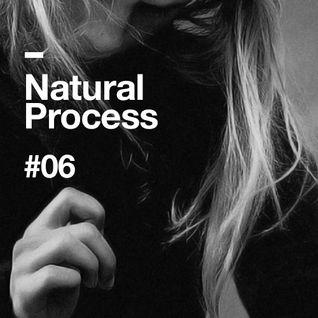 Natural Process #06