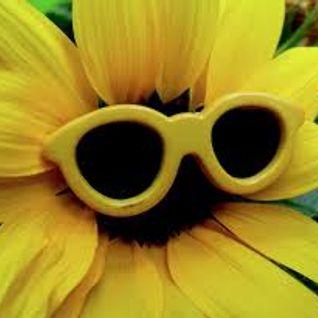 Frau von Welt - Sonnenbrillenfaktor