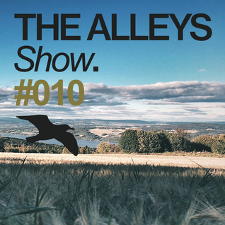 THE ALLEYS Show. #010 PHM