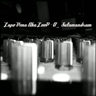 LooP-O _ Salamandrum _ Original mix