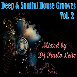 Deep & Soulful House Grooves Vol. 2