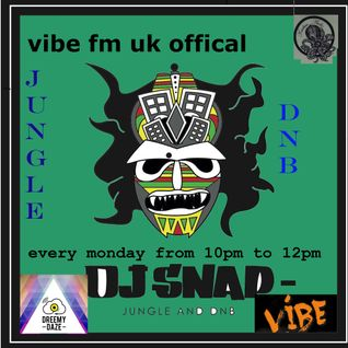 dj snap on vibe fm  uk official 26/9/16 with  guest  shaundi  frequencies  dnb and jungle