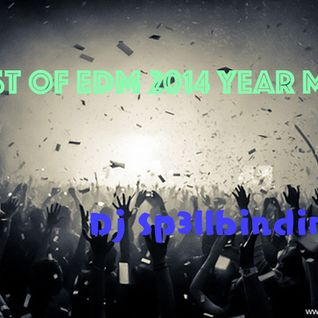 Best Of EDM 2014 Year Mix