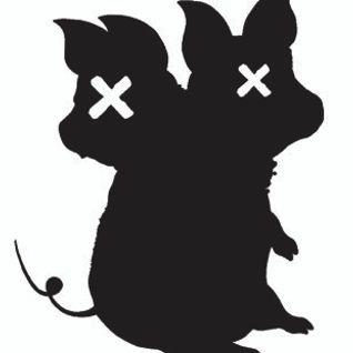 Sterrenplaten 1 maart 2013 - Swine Flu Festival