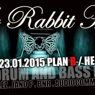 DJ BNR feat. MC Maso & J.J. Jules live @ Rabbit Hole - Plan B Heilbronn 23-01-2015