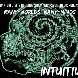 Quantum-D Podcast #009 - Intuitiu - Many-worlds, Many-minds