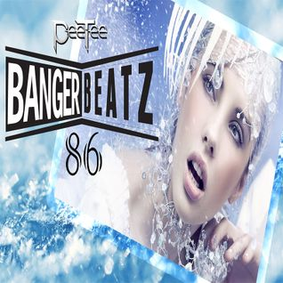 "New Electro & House Music Dance Club Mix - PeeTee ""Bangerbeatz"" 86"