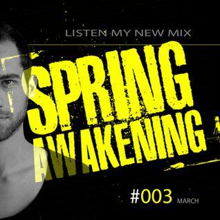 Spring Awakening #003