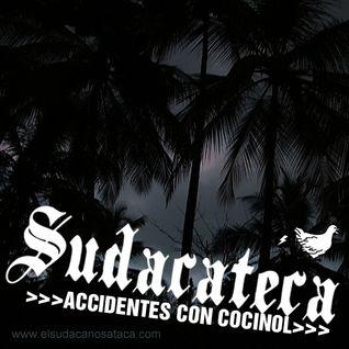 SUDACATECA >Accidentes con Cocinol<