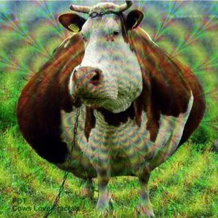 PDT - Cows Love Fractals