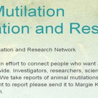 A closer look at animal mutilations - in conversation with Margie Kay