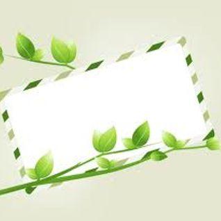 A qualcuno Piace Verde - Nozze Bio - Consus 3