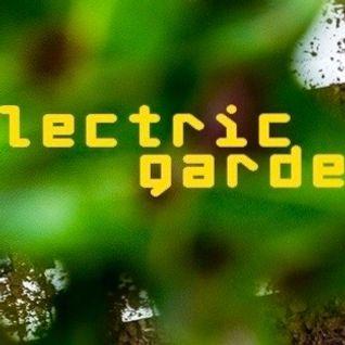 ELECTRIC GARDENERS _ ingwer rogers + daniel schmitt + charles petersohn