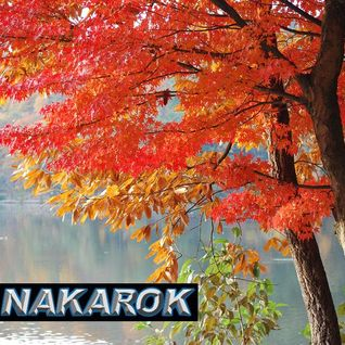 DJ NAKAROK Autumn Mix