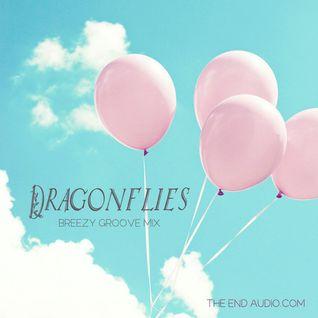 Dragonflies Springtime Groove Mix