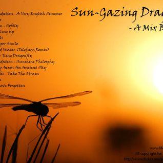 Sun-Gazing Dragonflies