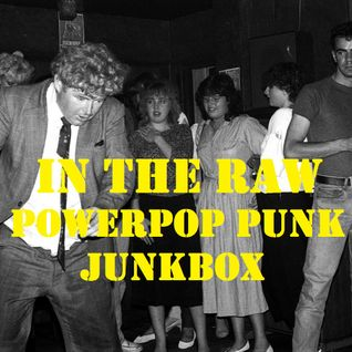 In The Raw- Powerpop Punk Junkbox