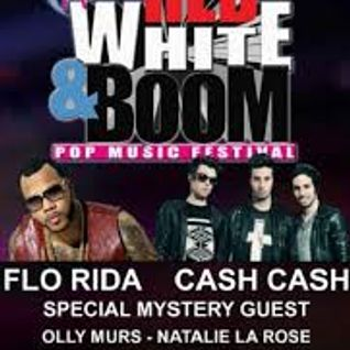 Bobby Bohn - Live at Red, White and Boom - EDM Village Stage