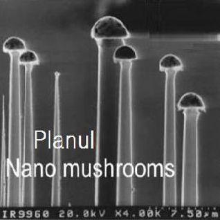 PLANUL - NanoMushrooms