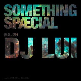 SOMETHING SPÆCIAL VOL.29 - DJ LUI