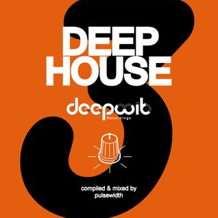 Deep House Label Showcase: DeepWit Recordings #3