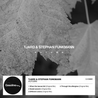 Tjard & Stephan Funkmann - Sweet Autumn (Original Mix)