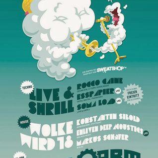 Rocco Caine Live & Shrill @ A.R.M. Kassel 29-11-13 DJ SET