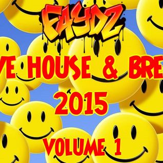 Rave House & Breaks 2015 (Volume 1)