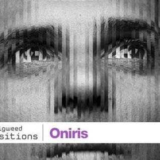Guest mix with Oniris (22.03.13)