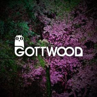 Mixtape XIV - Gottwood DJ Competition Mix