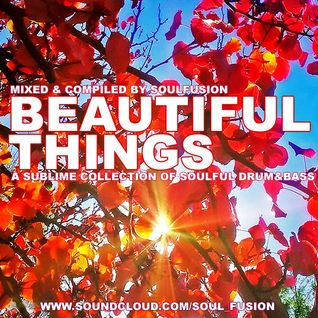 Beautiful Things (July 2013)