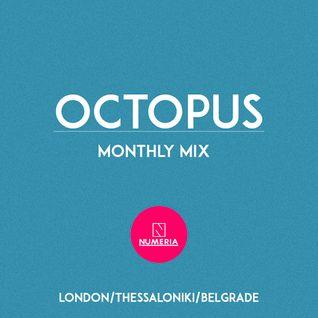 Octopus #3