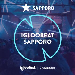 Igloobeat Sapporo 2016 - DJ Shaun