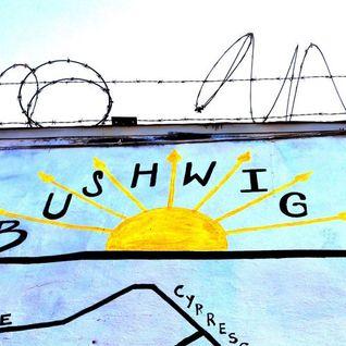 BushWIG Summer