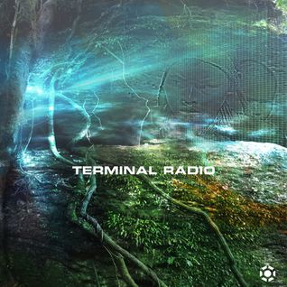 V/A - Terminal Radio: Transmission 24 (curated by Loose Link, 12/19/14)