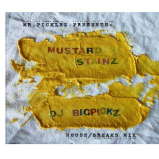 dj bigpickz - mustard stainz