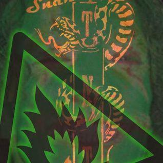 The Snake Pit - Shangri-la - Glastonbury Festival 2011