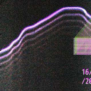 Neträp! #2  16.10.2014