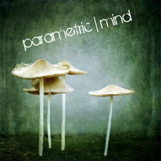 Parametric Mind - Glam sessions 14 - 9 - 2013