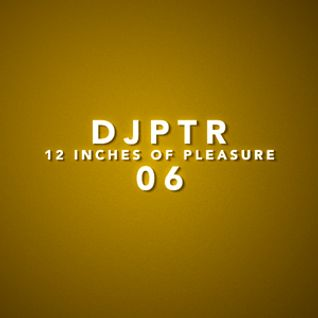 DJPTR - 12 Inches of Pleasure 06