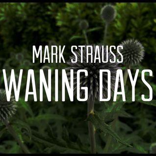 Waning Days
