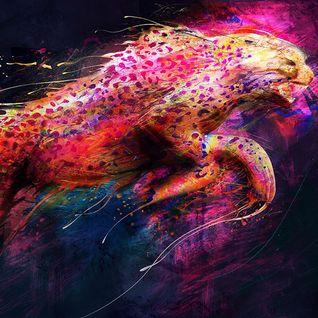 Jaguar#07 DiscoNation