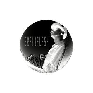 Brainflash - Promomix January(Dynamic Dj sessions)