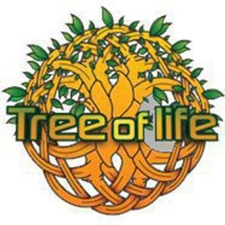 Edell - Winter Psygressive set special for Tree Of Life Festival 2013