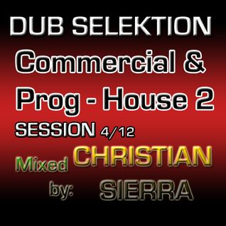 Dub Selektion - Commercial & Prog-House Vol.2 Session 4-12