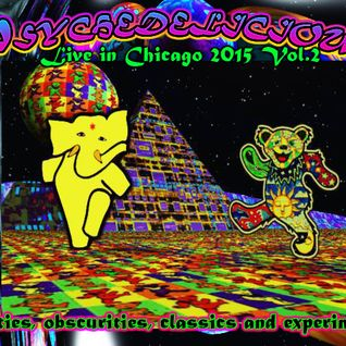Psychedelicious REDMOON Chicago 2015 Vol 2