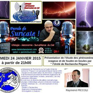 Parole de Suricate : Laboratoire de Recherche sur la Foudre avec Raymond Piccoli ( janvier 2015 )