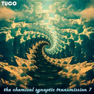 The Chemical Synaptic Transmission 7