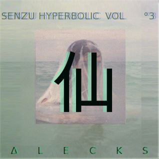 SENZU HYPERBOLIC MIX VOLUME °3 - FEATURING ∆LECKS
